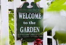 ~garden splendour in the grass~ / by ARoc