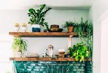 Kitchen / Dream kitchens