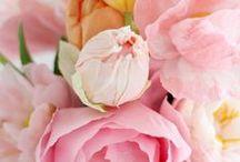 Tutorials - flowers