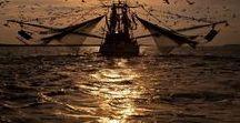 """⚓Gente di mare﹏⛴﹏ᘝᘝ / """"Il luogo dove vi è più energia al mondo è quello dove l'elemento acqua si unisce all'elemento terra. In riva al mare, al Sole, dove anche l'elemento fuoco è presente, l'energia è ancora maggiore. A cui si unisce la forza dell'aria, data dalla brezza del vento"""". Insomma la riva del mare come il luogo dove si concentrano i 4 elementi del mondo. (Fragmentarius)  ﹏⛴﹏ᘝ...NO PIN LIMITS-REPIN AT WILL!!!﹏⛴﹏ᘝ"""