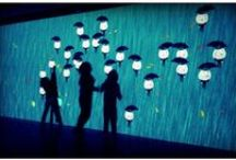 Projections / by Bridget Doyle