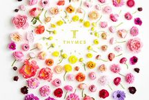 all things floral / by Isobel Sippel