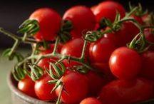 tomatoes, taste the sunshine