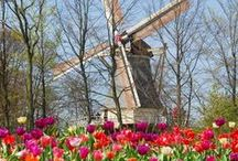 Belgium & The Netherlands / Travel planning and inspiration for Belgium (Brussels, Bruges) and The Netherlands (Amsterdam, Edam, Lisse, Zaanse Schans)