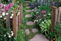 Gardening and and cool ideas