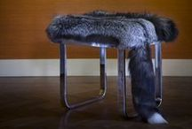 Fur and Interior