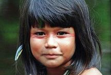 Amazon Rainforest / by Patricia Martin