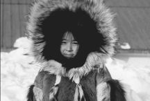 Artic Fur