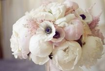 Bouquet Inspiration / Colors, textures, flowers, specific bouquets that inspire my designs.