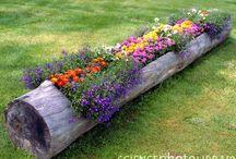 HOME I Garden