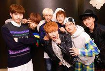BTOB / Members Sungjae Eunkwang Ilhoon Hyunsik Minhyuk Peniel Changsub