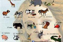 L'Italiano / materiali didattici per imparare l'italiano