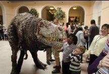 Dinosaur Day 2014 / A look at our annual Dino Day. Photos by Trevor Harmon.