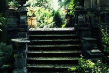 stairs / lépcsők