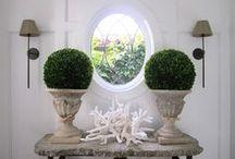 Indoor plants / by Hana Miller