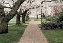 Liberal Arts, Careers, Life / by UW Career Center