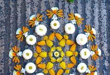 - Flower Creations - / Painting with flowers, floral structures and floral patterns