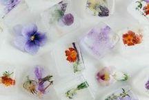 - Flowers & Food - / Edible Botanical Delights