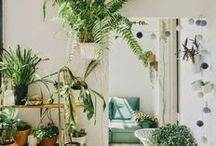 BOTANICAL INTERIORS