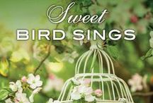 Where the Sweet Bird Sings / These photos are inspiration behind the novel WHERE THE SWEET BIRD SINGS (September 2017). In this provocative new novel, the author of Root, Petal, Thorn offers a powerful story of resilience, hope, and the secrets that, no matter how deeply hidden, can shape and ultimately unite a family. What connects us to one another? Is it shared history? Is it ancestry? Is it blood? Or is it love?