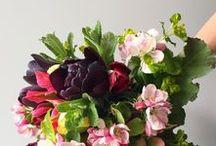 - Bouquets -