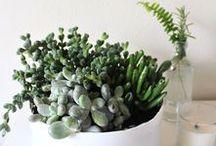 Design | Decoration Ideas / Overload of DIY inspiration for: home decoration, interior design.