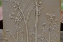 Botanical Castings / Capturing the beauty of flowers and foliage in plaster or Hydrostone casting to create fossil-like impressions