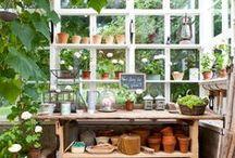 Gardening and lifestyle