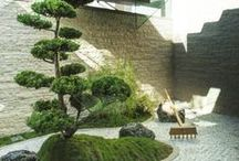 Modern Gardens We Like / Gardens that are soothing and that compliment modern design