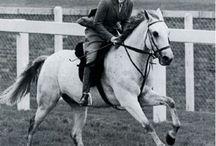 Royals and Horses