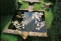 ~ Fountains, Pools and Water Features ~ / by Rhonda Mindrum