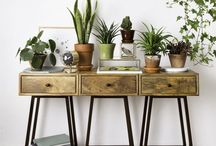Wohnen mit Pflanzen * Urban Jungle / DIY Ideen & green spaces for home