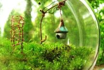 Terrariums / I have an obsession  with  these at the  moment!