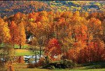 Check out Fall Foliage / New England Fall   #NewEngland #EastCoast