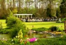 Spring at Jasmine Plantation  / Getting married in March, April or May? Check out our grounds!