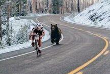 Biking / #Biking