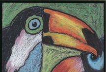 kuvaamataito, lintuja