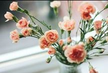 - fresh blooms - / Because flowers are my favourites...