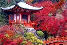 Japan - Kyoto (Kansai)