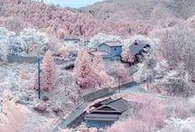 Japan - Nara (Kansai)
