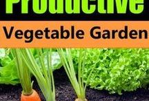 Gardening / Gardening ideas and tips for gardening with kids.