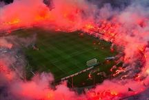 PAOK FC Fans