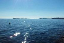 Visit Lake Garda / Kennst du das Land wo die Zitronen blühn, im dunklen Laub die Goldorangen glühn, ein sanfter Wind vom blauen Himmel weht, die Myrte still und hoch der Lorbeer steht, kennst du es wohl? Dahin, dahin Möcht ich mit dir, o mein Geliebter, ziehn!  - Goethe -