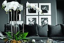 interior design in black / Stylish black decor
