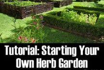 Healthy Herbal Living
