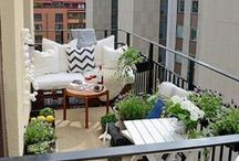 Living & Lifestyle   Flowers & Outdoor Decoration