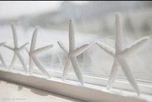STARS!!!