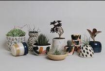 Botanical / by Leigh Harrington