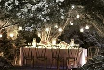 O my garden / A girl can dream right?