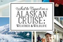 Travel   Cruising / Cruise vacation tips, ideas and reviews.